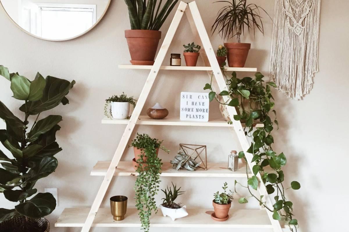 nexo inmobiliario conseguir decoracion interiores vitange