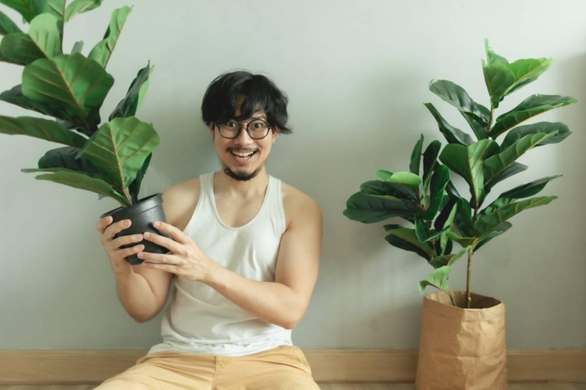Consejos para cuidar plantas dentro de casa