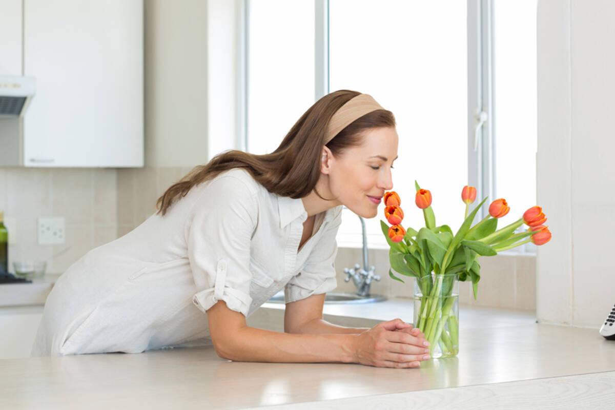 ¿Cómo tener buen aroma en casa?