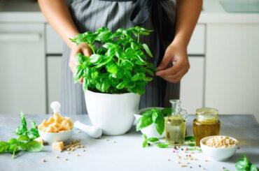 Conoce las plantas comestibles que puedes cultivar en casa
