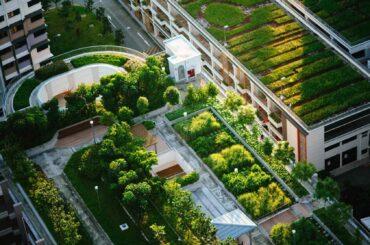 terraza verde edificios