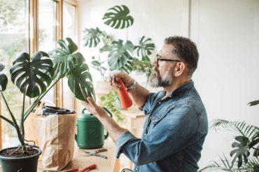 hombre regar plantas departamento